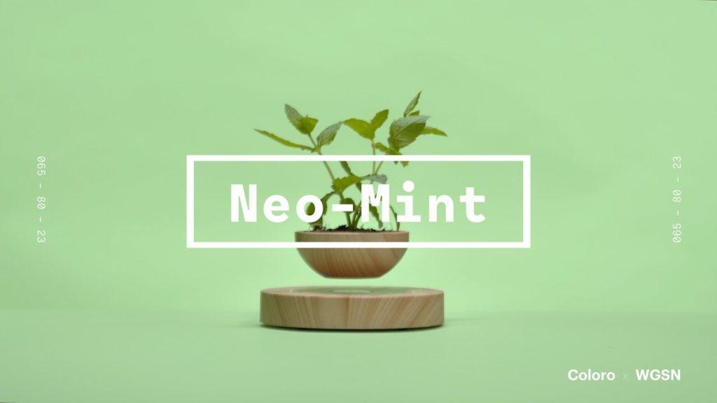 tsvet-2020-goda-wgsn-neo-mint