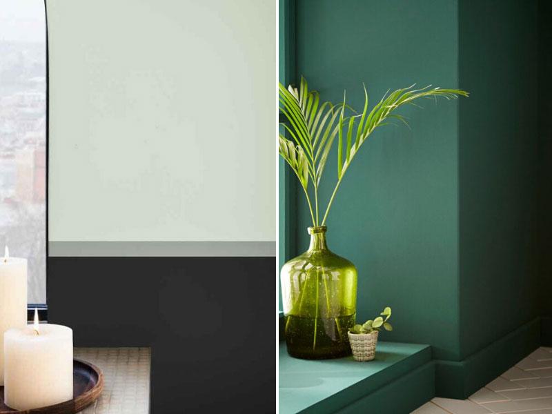 Пример зеленых стен